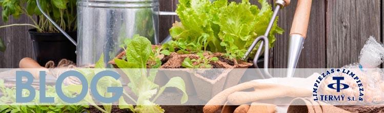 consejos mantenimiento jardin