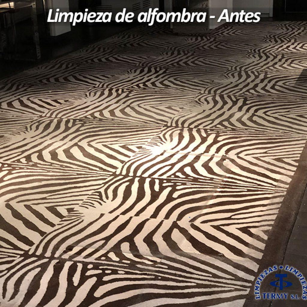 Limpieza de moquetas madrid limpiezas termy 917922551 for Precios limpieza alfombras madrid