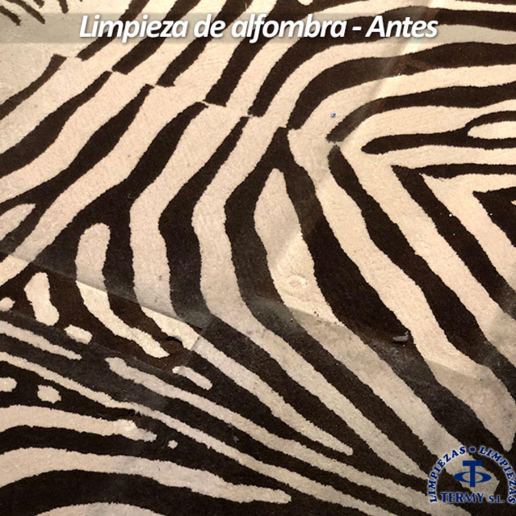 Precio limpieza de alfombras best alfombras tapizados for Precio de alfombras